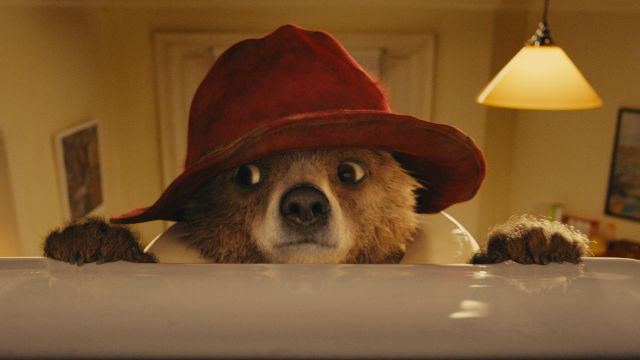 76365-640x360-paddington-trail-movie-640